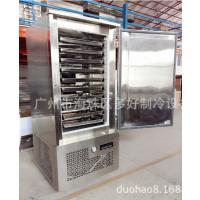 厂家直销零下45度单门10盘速冻机 速冻柜 急冻柜
