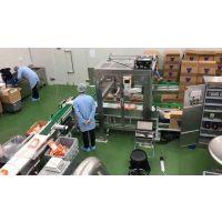 机器人装箱系统
