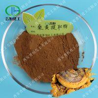 桑黄提取物 桑黄多糖50% 桑黄粉 桑黄提取物的价格与作用 现货