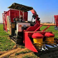 河北履带式牧草收割青储机 全自动液压自卸式回收机 优质厂家报价
