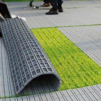 大型场地活动草坪保护板 演唱会草坪保护板租售 出租 租赁