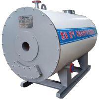 化工油脂纺织印染炼焦碳素燃天然气导热油炉卧式工业锅炉
