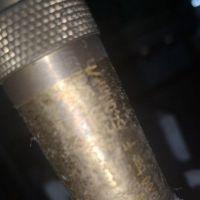 BRINKMANN泵STE146/300+001