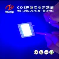 紫光COB光源 365NM 固化专用COB光源 尺寸 形状定制 专业COB定制