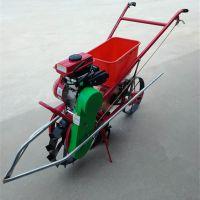 牡丹花园施肥机 圣鲁菜园农田追肥机 特价施肥播种机
