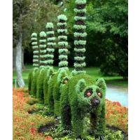 大量出售仿真植物造型 立体景观雕塑 真假草坪制作