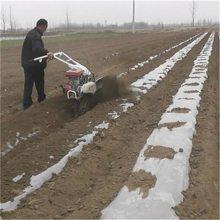火龙果开沟施肥机 菊花种植开沟机 够用大棚起垄培土机