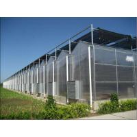 智能温室大棚 加工智能温室大棚 青州宜恩建造