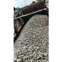 洛阳天然卵石批发/采购变压器鹅卵石/水处理鹅卵石价格
