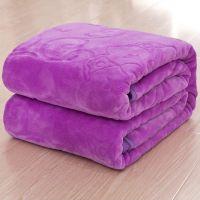 儿童床双人单子儿童毛绒单人床家用学生午睡盖毯毛毯学生铺公主风
