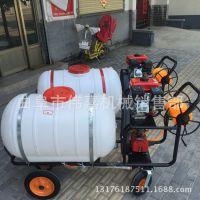 高压远程手推式果树打药机 养殖场消毒用喷雾器 1