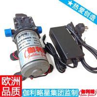 DPS直流电动隔膜泵 微型隔膜泵 电动喷雾器隔膜泵 伽利略星爆款