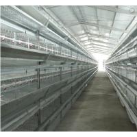 最新加粗肉鸡笼弹簧门热镀锌鸡笼 三层层叠单条俩笼位鸡笼