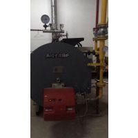 利雅路RS50,利雅路燃气燃烧器,50万卡燃烧器