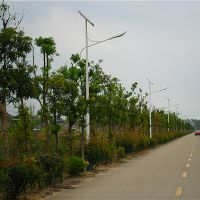 6米太阳能路灯40瓦多少钱
