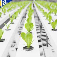 PVC环保水培管道 厂家直销 供应温室大棚 阳台种植管道系统