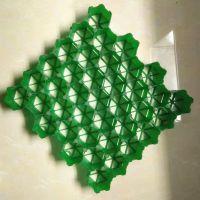绿化专用塑料HDPE植草格护坡斜坡专用植草格停车场消防车道塑料草坪砖