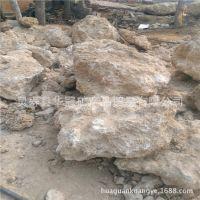 供应上水石 吸水石 造景石 多孔吸水石 假山石