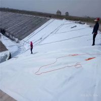 桂林600g一布一膜 复合土工膜 复合土工布 厂家