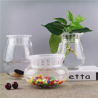 小清新创意水培绿萝花瓶玻璃透明铜钱草插花器迷你小鱼缸桌面摆件