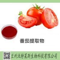 番茄提取物 番茄浸膏 番茄粉 番茄汁粉 番茄酵素  兰州沃特莱斯