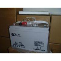 圣阳SP12-100铅酸免维护蓄电池12V100AH质保三年UPSEPS直流屏专用