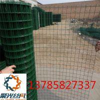 养殖铁丝网绿色围栏网果园防护网荷兰网带立柱 量大从优