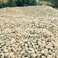 电厂鹅卵石 白色鹅卵石批发 5-8公分优质鹅卵石
