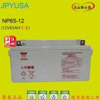 汤浅(YUASA)NP65-12/免维护蓄电池12V65AH太阳能/UPS专用蓄电池