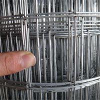 煤矿支护焊接网厂家 电焊网定做 金属焊接网厂家