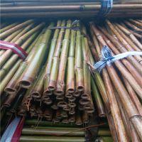 2.5米西红柿架竹竿 供内蒙古临河地区使用(图)