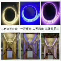 LED灯带5730三色变光霓虹暖光蓝光防水led灯条 客厅卧室灯LED灯带