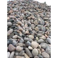 厂家生产销售 纯天然鹅卵石 远景鹅卵石 路面铺设鹅卵石在山西省阳泉市平定县盂县哪里有?