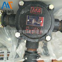 长期供应矿用防爆接线盒型号,隔爆型低压电缆接线盒BHD2-40A/2T