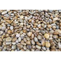 平顶山天然卵石图片变压器鹅卵石/水处理鹅卵石厂家直销