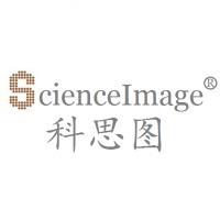 北京科思图科技有限公司