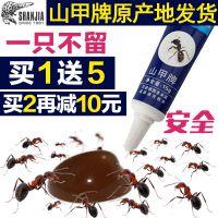 一件代发山甲牌包邮蚂蚁药家用杀小红黄黑蚂蚁灭蚁胶饵除灭蚁灵饵