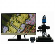 QS供应 研究型高倍超景深显微镜 MTZ-90T 精迈仪器 厂价直销