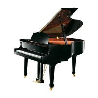 珠江钢琴品牌保养
