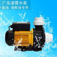 广东正品凌霄海水专用泵TDA75浴缸按摩泵 海水泵 鱼池循环泵