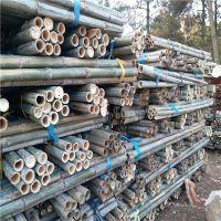 2米-6米园林竹杆批发 江西发货