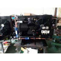 山东10匹谷轮制冷压缩机机组