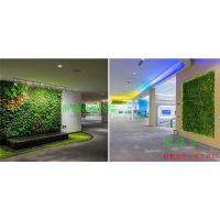昆山植物墙哪家做的好 ---苏州醉墙音十年专注植物墙苏州公司