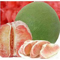 泰国红宝石青柚苗多少钱 暹罗青柚苗哪里买,2018稀缺品种