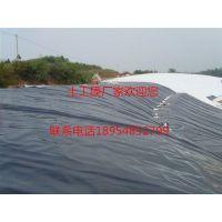 http://himg.china.cn/1/5_751_1051983_500_375.jpg