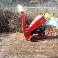 厂家直销果树绿化散碎树枝粉碎机 全新质量型电启动卧式碎枝机