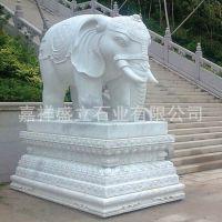 专业制作石雕动物大象 汉白玉镇宅看门风水石象 专业厂家