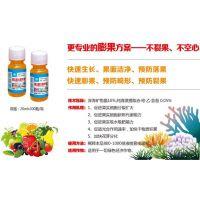 供应得海龙果实膨大精华素 产品作用膨果不裂果不空心 20ML*300瓶/箱富含深海矿物晶 水剂