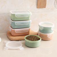 家用圆形方形迷你塑料冰箱素色厨房保鲜盒便携式便当盒学生小饭盒