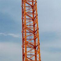 山东泽宇QTZ50(4808)塔式起重机 生产厂家销售
